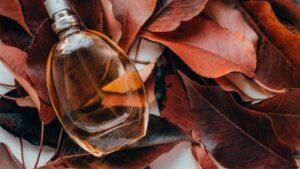 Top 10 Beste Damenparfums Herbst 2020 mini